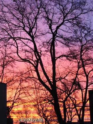 Bonito amanecer
