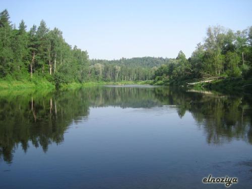 El rio en el parque natural de Sigulda