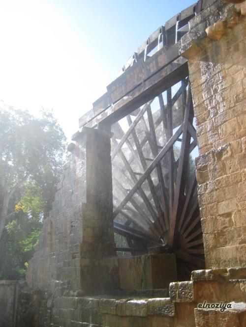 Detalle de la rueda del Monasterio de Rueda.