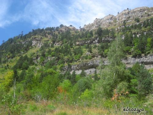 Una de las laderas de Ordesa