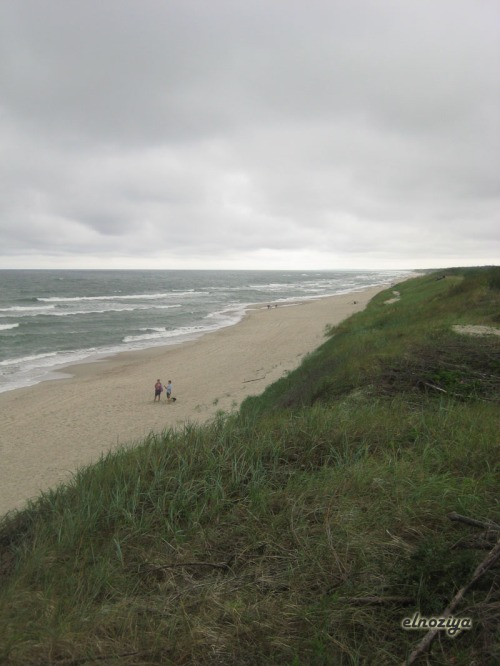 Infinitas playas desiertas